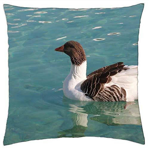 BXBX Funda de Almohada (20 x 20 Pulgadas) - Pato, pájaro Marino, Animal, Paz, Naturaleza, Salvaje 3