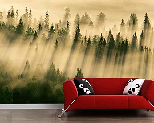 HUATULAI Muurschildering 3D Behang Bossen Boogschutters Mist Natuur Fotobehang, Woonkamer Sofa TV-muur Slaapkamer Keuken Wandpapier Home Decor Cafe Papel De Pared 250 x 175 cm.