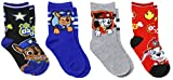 Nickelodeon Boy's Paw Patrol 4 Pack Crew Socks, Shoe Size 7-10