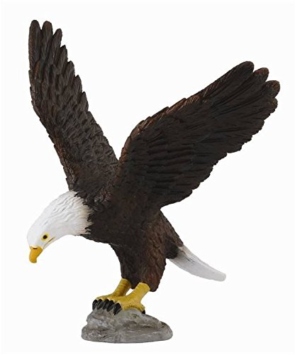 CollectA Wildlife American Bald Eagle Toy Figure - Authentic Hand Painted Model