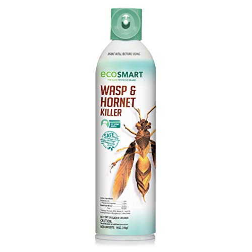 EcoSMART Wasp & Hornet Killer, 9 oz. Aerosol Spray Can