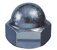 大里 ユニクロメッキ 袋ナット W5/16用 20本入 (36351)