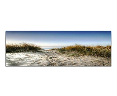 Paul Sinus Art Panoramabild auf Leinwand und Keilrahmen 120x40cm Sanddüne Gräser Meerblick Himmel