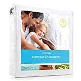 Linenspa Zippered Waterproof, Dust Mite, Bed Bug Proof, Queen Size Hypoallergenic Breathable Protector, Mattress Encasement