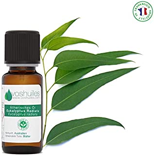 Eukalyptus Radiata Ätherisches Öl - 10ml