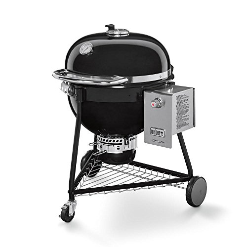 Weber Summit Grill Barrel Charcoal + Natural Gas Black – Barbecues & Grills (Grill, Charcoal + Natural Gas, Barrel, Grate, HINGED LID, Black)