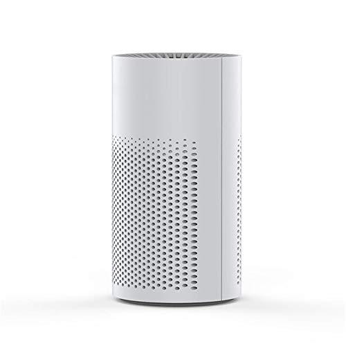 Buy Leechenxi Mini Air Purifier for Home,for Allergy, Pet Dander, Odor, Cigarette Smoke, Mold, Dus...