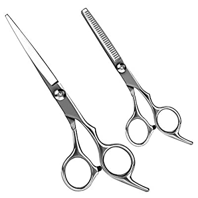 Hair Scissors Hairdressing Scissors, Professional Thinning Scissor Set for For Salon/Home/Men/Women/Kids/Adults Shear Sets Hair Cutting Shears 6.5Inch?Silver 2 pcs? from KTHZI