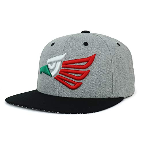 Trendy Apparel Shop Hecho En Mexico Eagle 3D Embroidered Snapback Cap - Heather Mexico