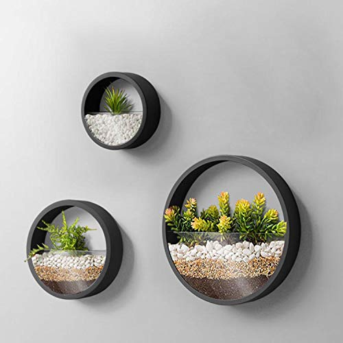 3 Pack Set Wall Planters,Modern Round Glass Wall Planter Succulent Planter Circle Iron Hanging Planter Vase for Herb,Small Cactus Perfect for Balcony, Room and Patio Decor (Black)