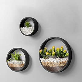 3 Pack Set Wall Planters,Modern Round Glass Wall Planter Succulent Planter Circle Iron Hanging Planter Vase for Herb,Small Cactus Perfect for Balcony, Room and Patio Decor (Black) 5 ♪♪Appearance and Design:Round metal hanging wall planter with glass baffle for planting real or faux small plants, flowers, succulents, air plants or cacti, Every part has been carefully designed, simple curves outline the simple and stylish atmosphere, Add a splash of color and style to your indoor spaces ♪♪Attention & Installation: Mounting with screws or wall hooks, ATTENTION: We prefer succulent plants,air plant,faux plants and some plants which doesn`t need much water. Because water will drip from 3 mount holes on the back of wall planter. ♪♪Material and Size: Stabilized iron alloy metal with powder coating ensures long lasting color and withstands extreme weather conditions. Tempered and limpid glass feasts your eyes, add visual intrigue to this wall hanging. Do not rust and no unpleasant smell. Size:Large:Thickness:5cm/1.9inch Diameter:30cm/11.8inch, Medium:Thickness:5cm/1.9inch Diameter:20cm/7.8inch, Small:Thickness:5cm/1.9inch Diameter:15cm/5.9inch