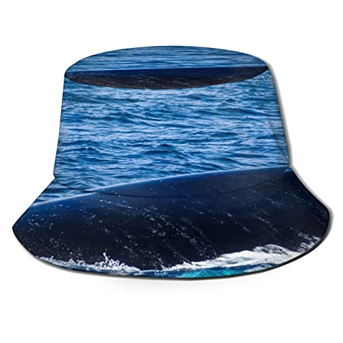 The Back of A Humpback Whale Unisex Casual Bucket Sun Hat Fisherman Cap for Fishing Hiking Camping