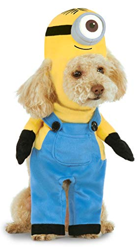 Minion Stuart Arms Pet Suit, X-Small