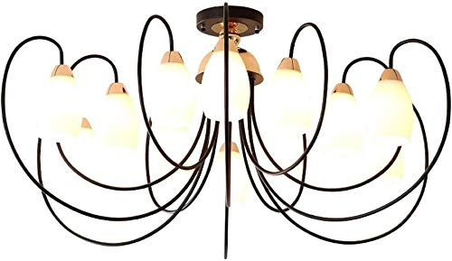 WWW plafondlamp Spider metaal vouwbaar retro plafondlamp industrieel met huis glas wit plafondlamp