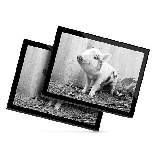 Destination 36506 - Mantel individual de vinilo (20 x 25 cm), diseño de animales de granja de cerdo, color blanco