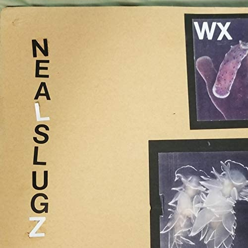 Neal Slugz