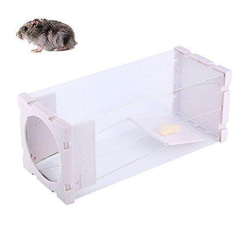 Quici Plastique clair Cage pour rat Trap Catch Release Humane Cage pour souris, souris, rat, Taupe, Belettes contrôle et plus petits rongeurs