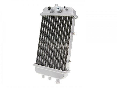 Kühler für Derbi Senda 50, Aprilia RX 50, SX 50, Gilera RCR 50, SMT 50