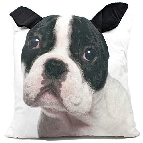 Concord Mülheim Flauschiges 3D Deko-Kissen mit Tier-Motiv, Hund Bulldogge, mit angenähten Plüsch-Ohren, 42x42cm