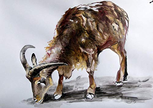 NUWCECK Rahmenlose Digitale Malerei Ziegenbock Mutterschaf DIY Malerei nach Anzahl Kits Ölfarbe Zeichnung Leinwand Home Decor Geschenk