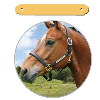 Pferdeschild mit Gravur - klein (außen gerundet) - für Sattel
