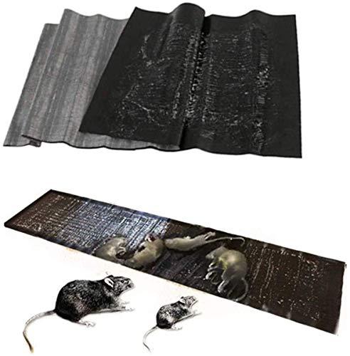 MSHOLY Caja de Almohadillas de Escarcha, caídas de Pegamento para Ratones con ratón pegajoso, Colgador de Insectos pegados pegados caídas para Interiores y Exteriores (5pcs) (Color : A)