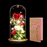 Rosa Bella e La Bestia, ANSUG Rosa Eterna e Luce a LED in Cupola di Vetro su Base in Legno Rose Fiori artificiali per San Valentino Anniversario di Matrimonio Vacanza
