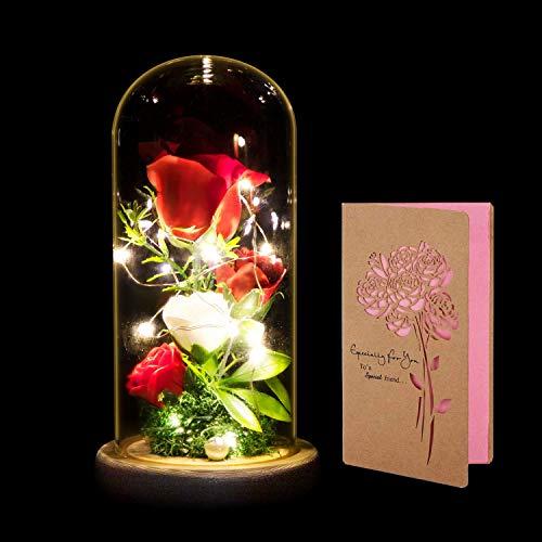 La Bella y La Bestia Rosa, ANSUG Rosa Encantada y Luces LED...
