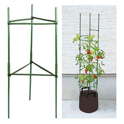 TIMESETL Tomaten Rankhilfe Gartenpflanze Stützstangen, 3 Set Tomatenturm Tomatenpflanze Rankgitter 40cm Lange Stahl mit Kunststoff beschichtete Rankstab mit Verbindungsstange, Rankhilfe für Tomaten