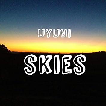 Uyuni Skies