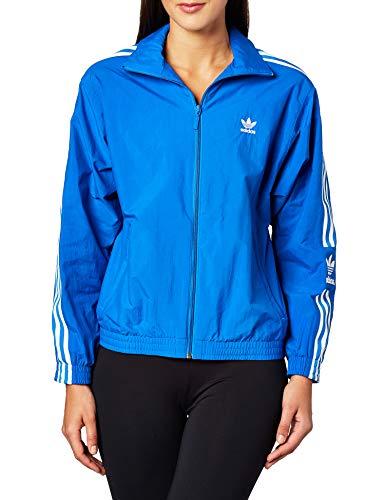 adidas Damen Lock Up Tt Sweatshirt, bluebird, 36 (Herstellergröße: 42)