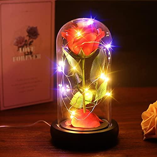 Foonii La Bella y La Bestia Encantada, Kit de Rosas, Elegante Cúpula de Cristal, Luces LED, Decoración para Día de San Valentín Aniversario Bodas