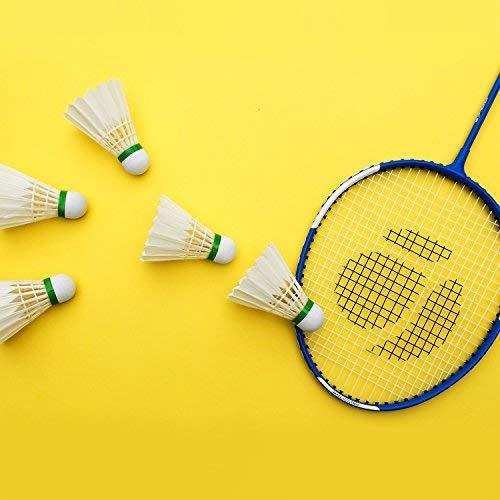 Philonext Badminton Shuttlecocks, 12Pcs Goose Feather Shuttlecocks Stable & Durable Sports Training Badminton Balls for Indoor Outdoor Game