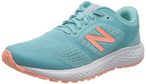 New Balance 520v6, Zapatos para Correr para Mujer, Azul Blue Ln6, 365 EU