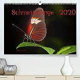 J. Koller 4pictures. Ch, A: Schmetterlinge 2020CH-Version(Pr