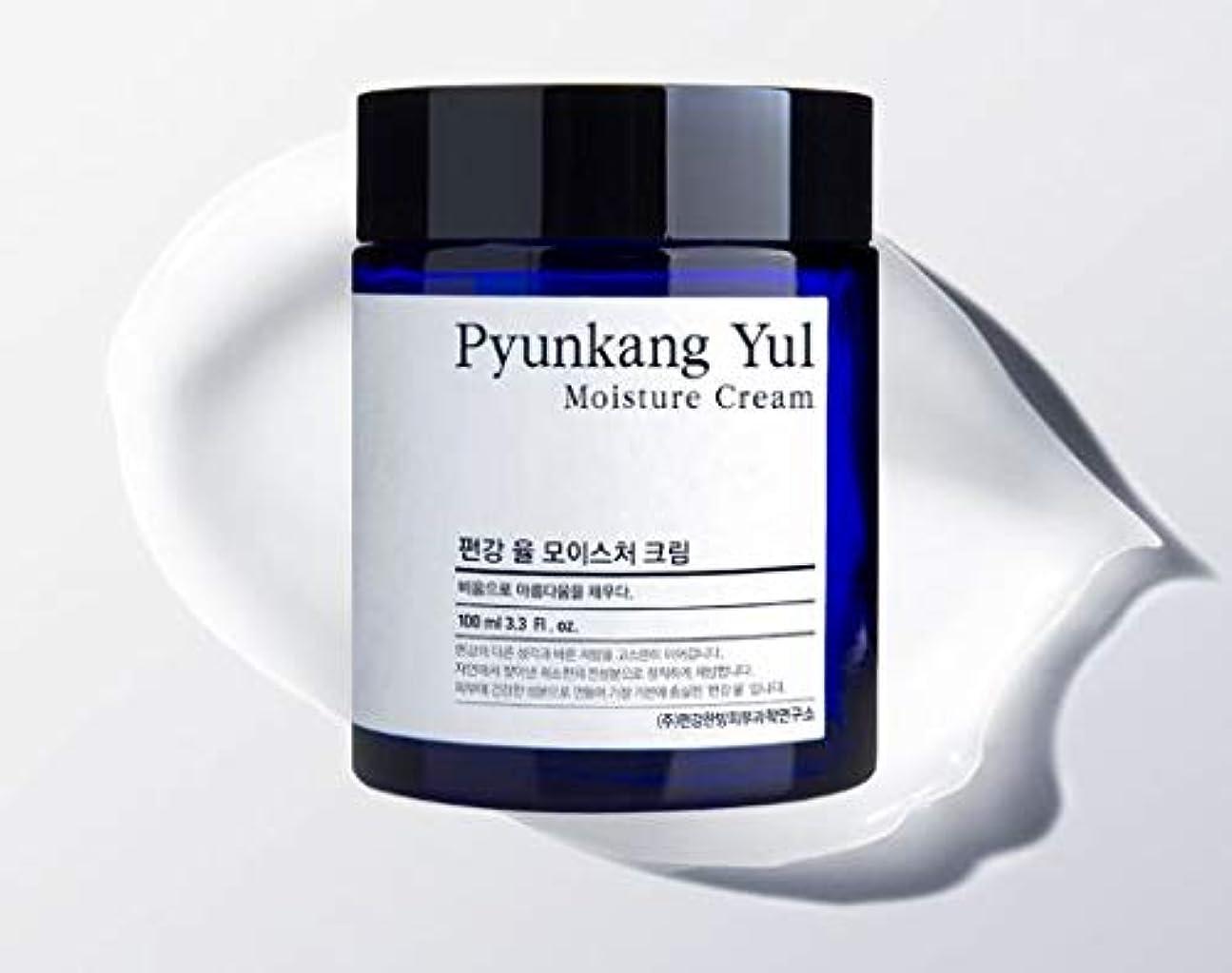小切手ご注意シンジケート[Pyunkang Yul] Moisture Cream 100ml /モイスチャークリーム 100ml [並行輸入品]