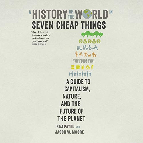 A History of the World in Seven Cheap Things cover art