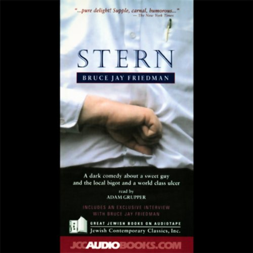 Stern audiobook cover art