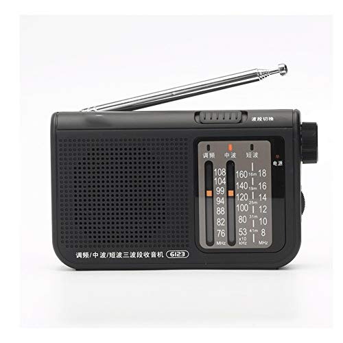 Bdesign Portable Radio FM AM SW with 3.5mm earphone socket Pocket Radio Simple Radio,Chargeable Speaker,for Elderly with Cylinder Type Adjustment
