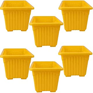 Airex Garden Essential Plastic Super Planter/ Pots (Square 8-inch, Yellow, Pack of 6)