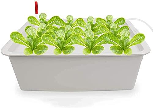 wsbdking Hydroponic system växande kit, 24 hål soilless odling växt växt låda med luftpump, trädgårdsskåp låda för örter/frön/sallad/grönsaker (Color : Off White)