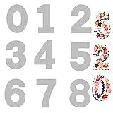 Zavril12 Tortiera Numerati Grande con Numeri da 0 a 8 Stampo per Torta Grande con Numeri Stampo per Torta Digitale Giorno Speciale per l'anniversario (9 Pezzi)