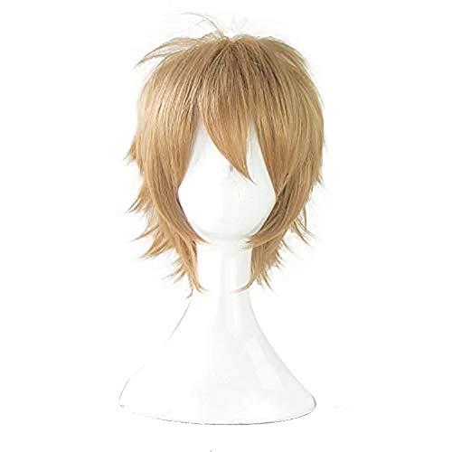 30cm Anime Danganronpa Cosplay Togami Byakuya Wig Role Playing Wigs Halloween Cosplay Short Brownish Yellow Hair-Togami byakuya