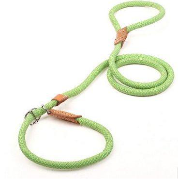 MASUNN Pet traction groothandel hond riem kleur nylon naad leer P ketting kraag geïntegreerde hond riem