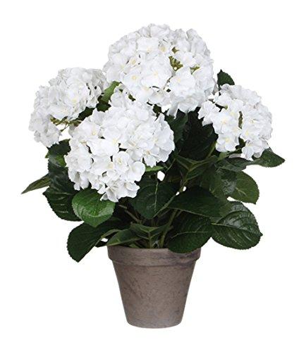 MICA Decorations 947278Fiori, Hydrangea, Bianco