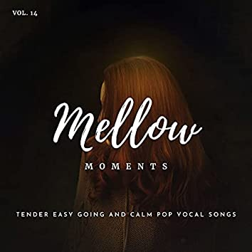Mellow Moments - Tender Easy Going And Calm Pop Vocal Songs, Vol. 14