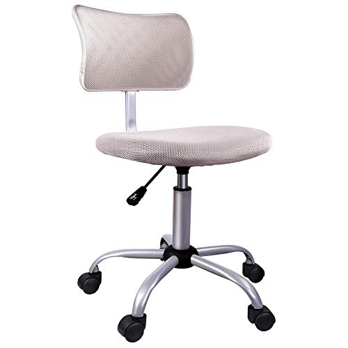 Armless Office Chair LowBack Computer Task Office Desk Chair with Swivel Casters for Home Office ConferenceLeaden Grey