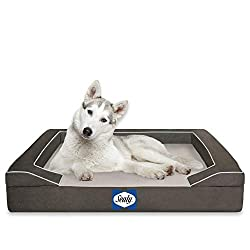 Cooling Dog Bed - Rescinding Review Dogsized