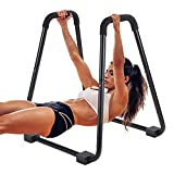 SV SCOOL VALUE Dip Bar,Dip Station Strength Training Exercise Dip Bar,Heavy Duty Dip Stands for Muscle,Arm,Shoulder,Chest,Back Strength Exercise