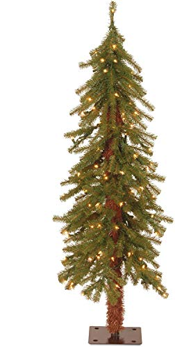 National Tree Company Pre-lit Artificial Christmas Tree | Includes Pre-strung White Lights | Hickory Cedar - 4 ft